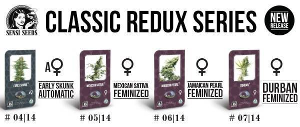 Classic Redux Serie Sensi Seeds