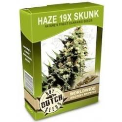 Haze 19x Skunk