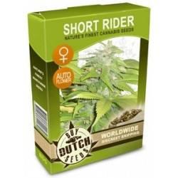 Short Rider Feminisiert Autoflowering - 5 Graines